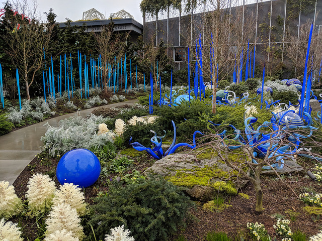 Visit-Chihuly-Garden-and-Glass