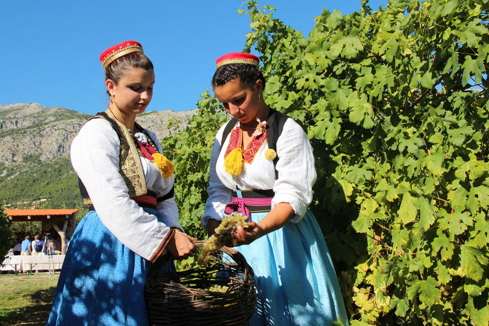 Konavle-Valley-Private-Half-Day-Tour-with-Wine-Tasting