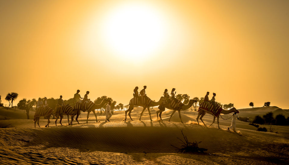 Sunset-Camel-and-Red-Dunes-Safari-With-BBQ-Lunch-at-Al-Khayma