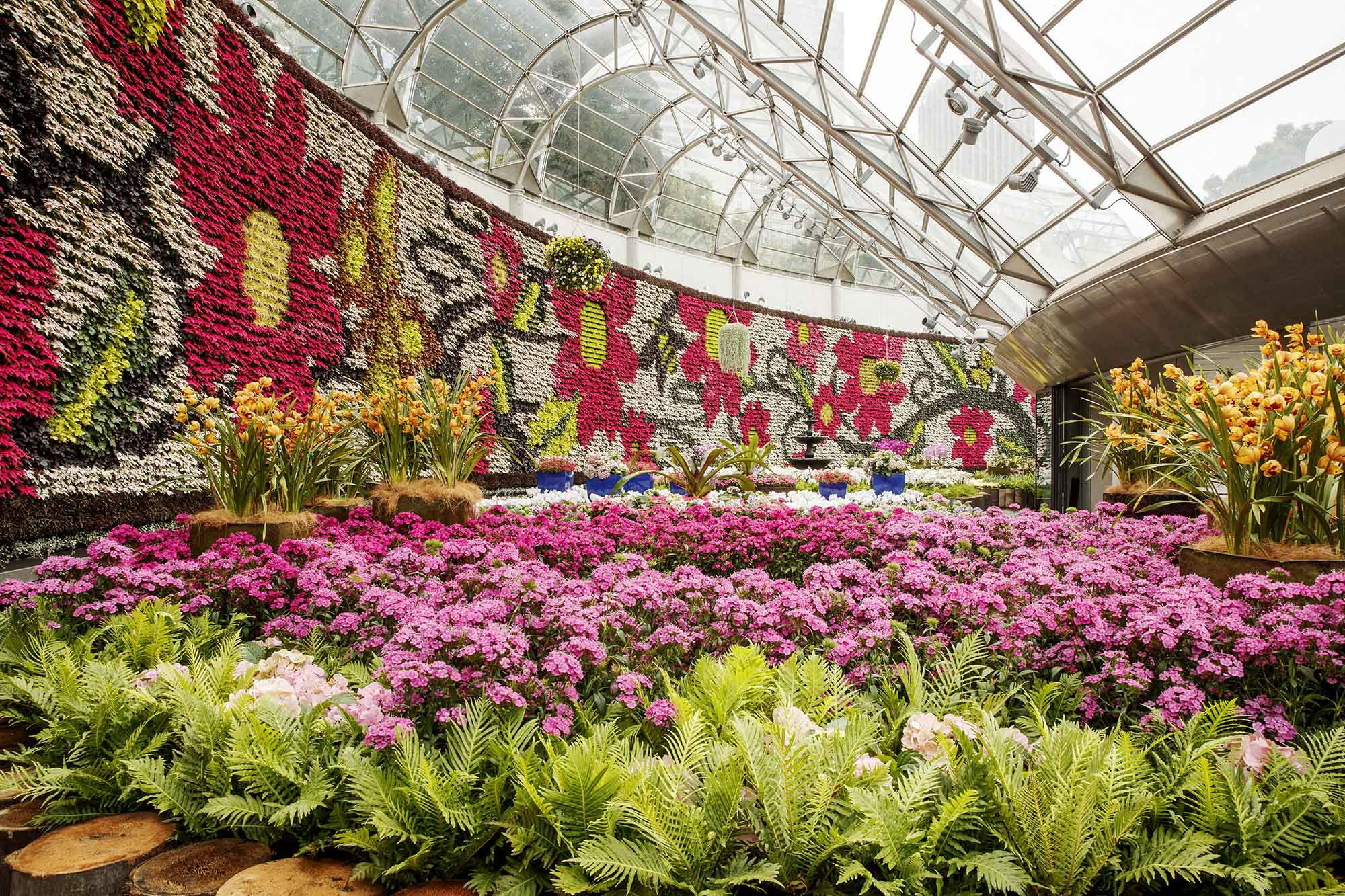 Discover-Sydneys-Royal-Botanic-Garden
