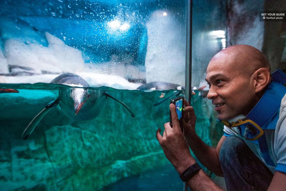 Discover-an-underwater-world-at-SEA-LIFE-Bangkok