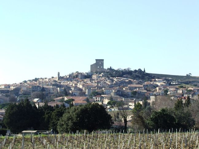 Savour-Wine-and-Chocolates-in-Provence