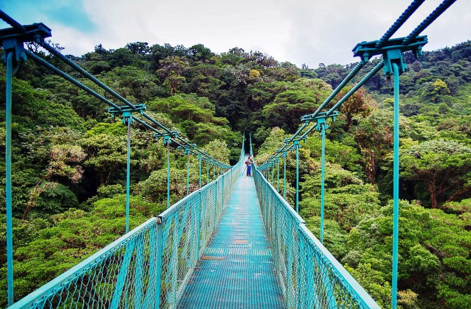 Tackle-High-Hanging-Bridges