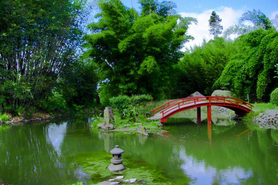Admire-Lankester-Botanical-Garden