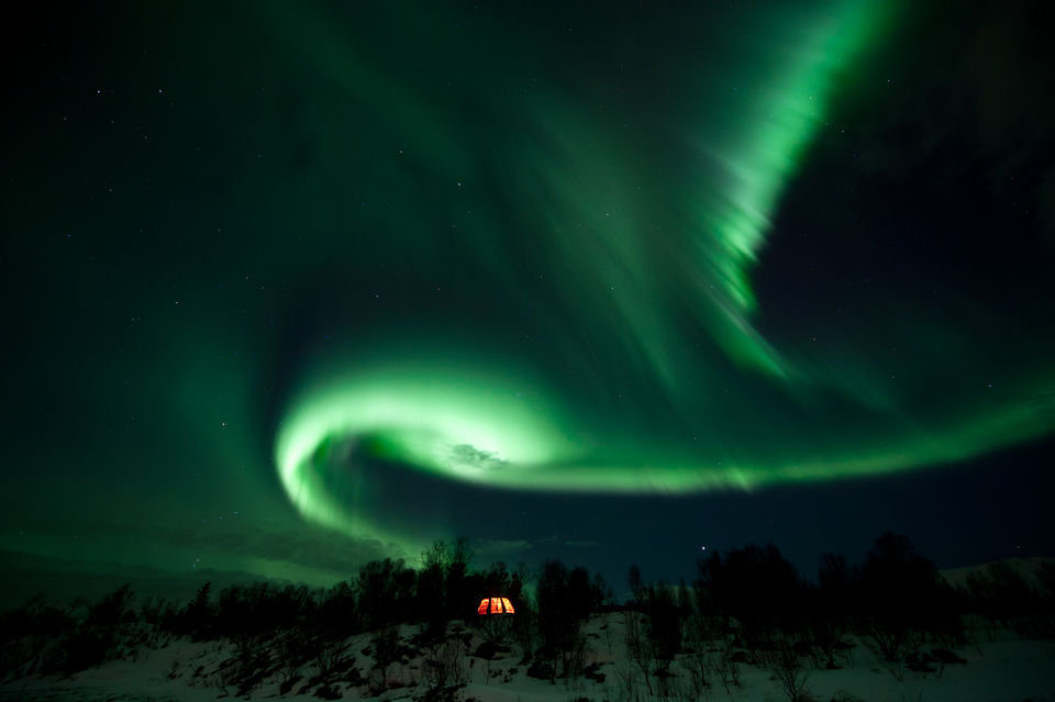 Glide-under-the-Northern-Lights-on-a-Husky-Sled