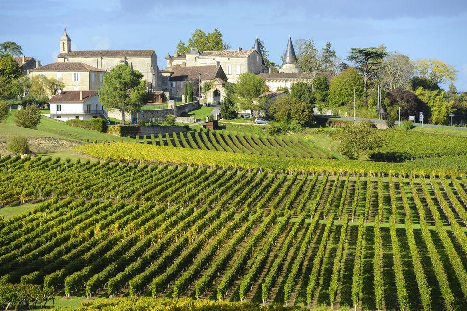 Go-Wine-Tasting-in-Bordeaux