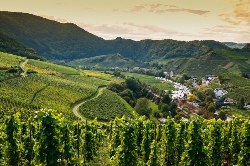Ahr Valley, Germany