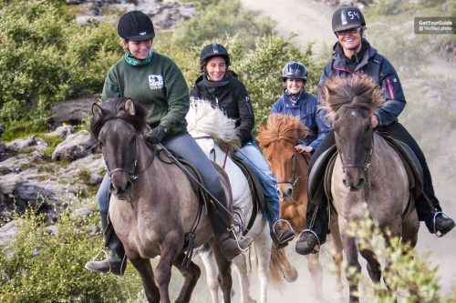 Horse Riding Tour in Lava Fields