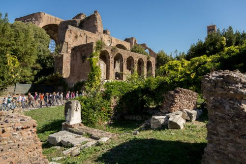 Private Colosseum, Forum and Palatine Hill Tour