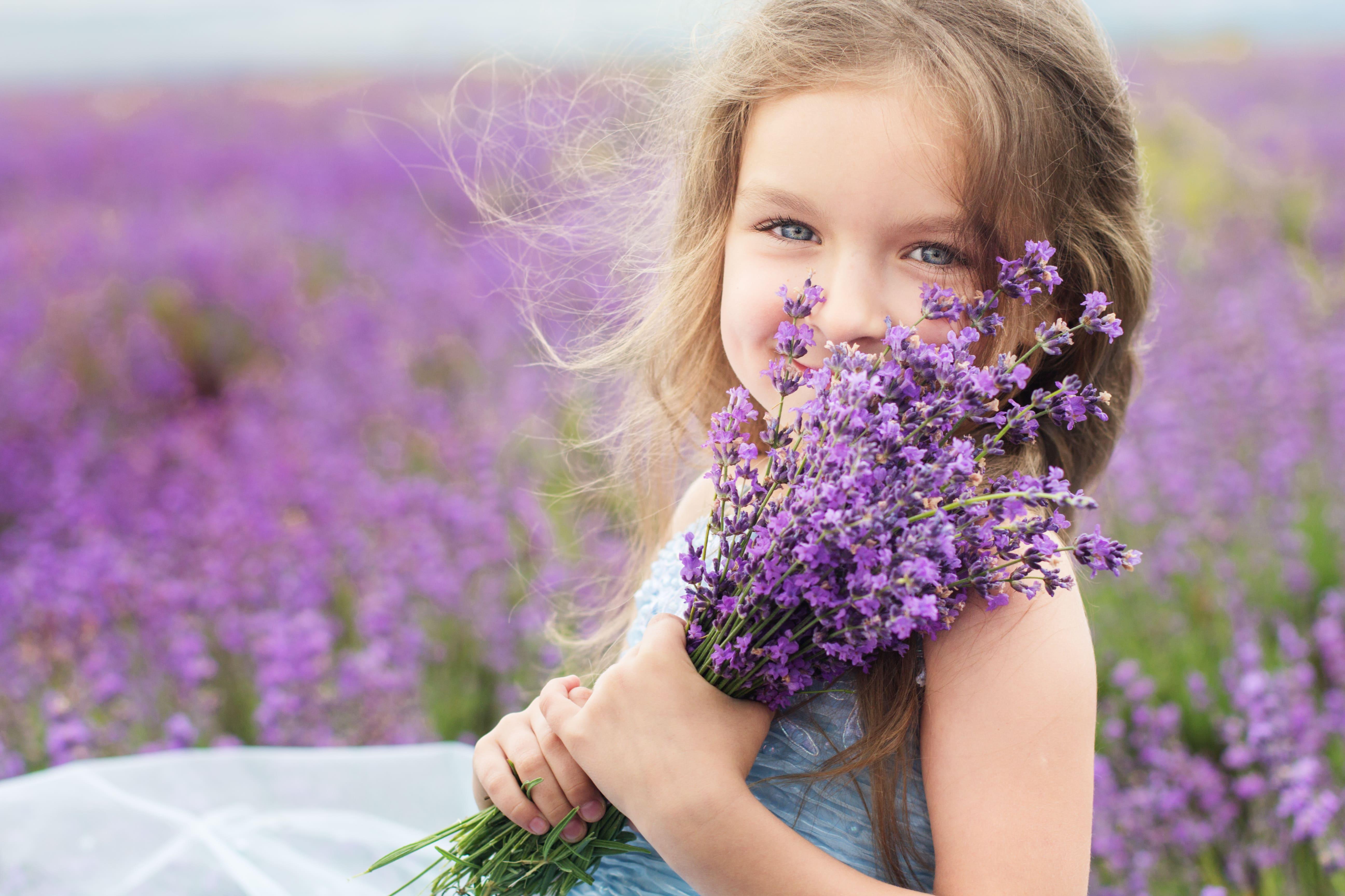 Stroll through a Lavender Farm