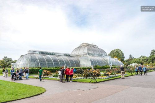 Take a Stroll through Kew Gardens
