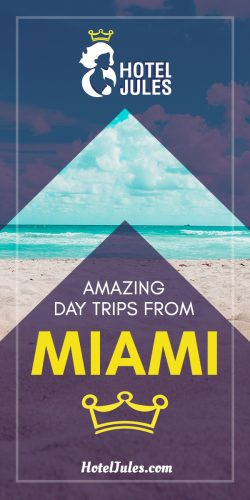 11 AMAZING Day Trips from Miami [[date]]