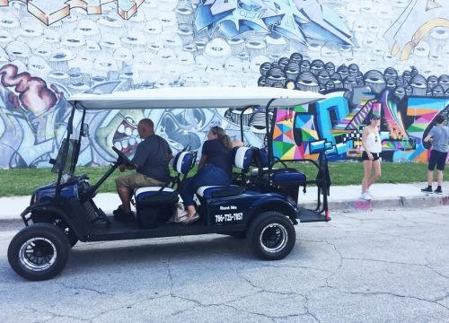 Wynwood Art District Tour
