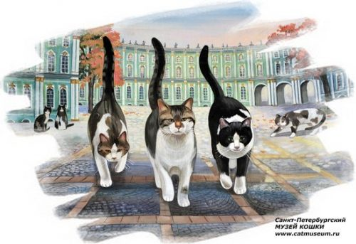 The Cats of St. Petersburg