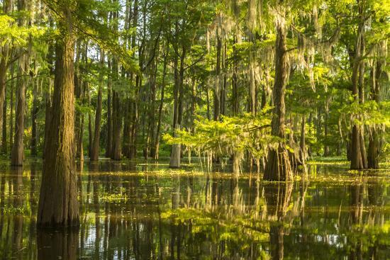 Atchafalaya National Heritage Area, Louisiana