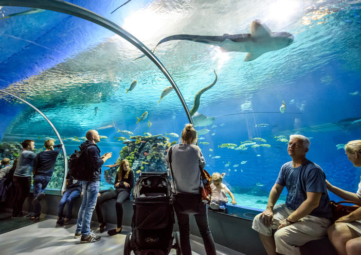Den Blå Planet (Danish National Aquarium), Copenhagen