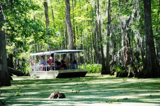 Honey Island Swamp, New Orleans