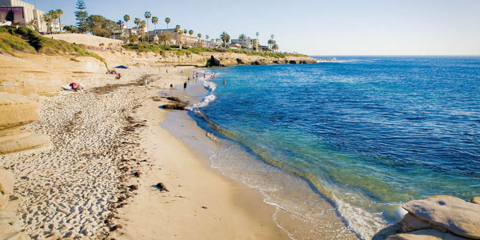 Discover La Jolla Cove