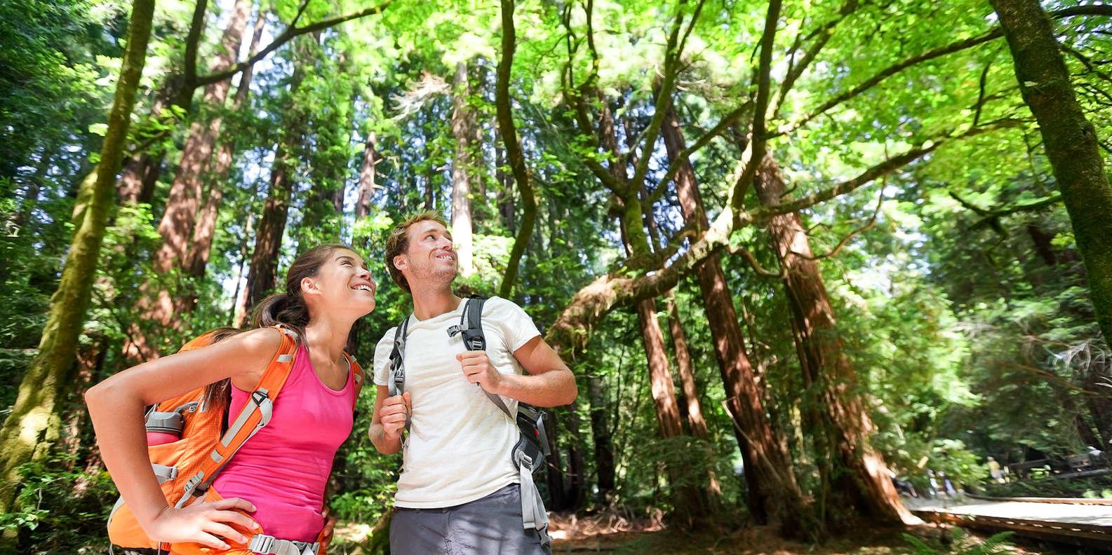 Hike in Muir Woods