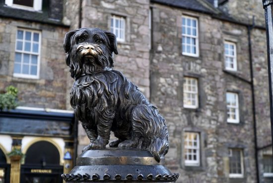 Take a Photo of Greyfriars Bobby
