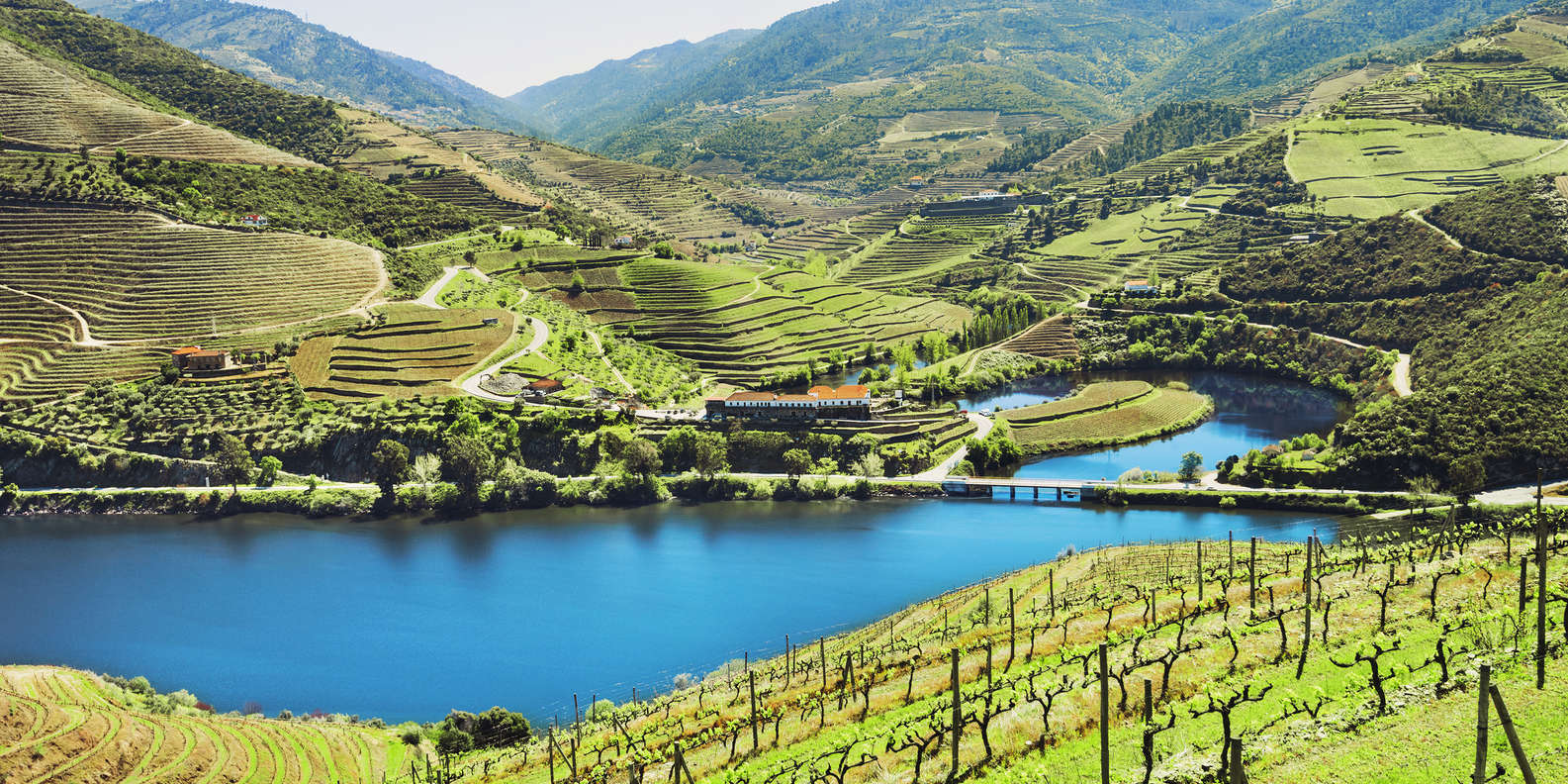 Visit Wineries of Douro Valley