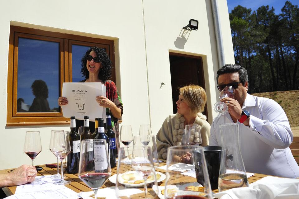Visit a Local Winery in the Ribera del Duero
