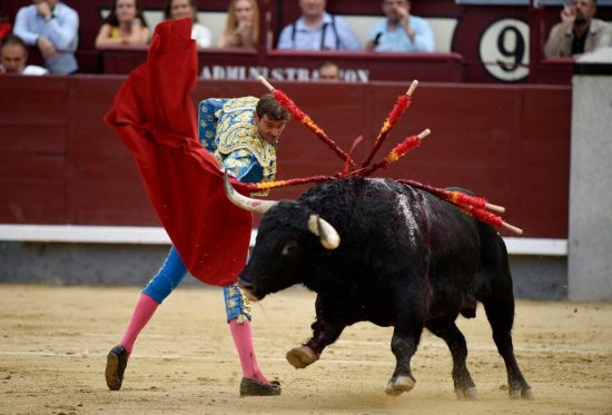 History of Madrid Bullfighting