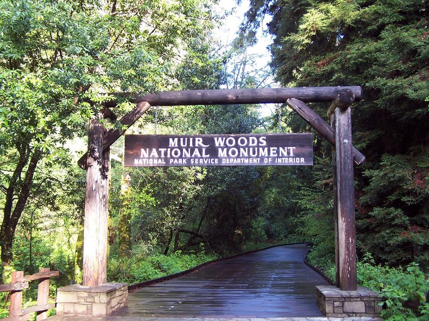 Alcatraz Island and Muir Woods Full-Day Tour
