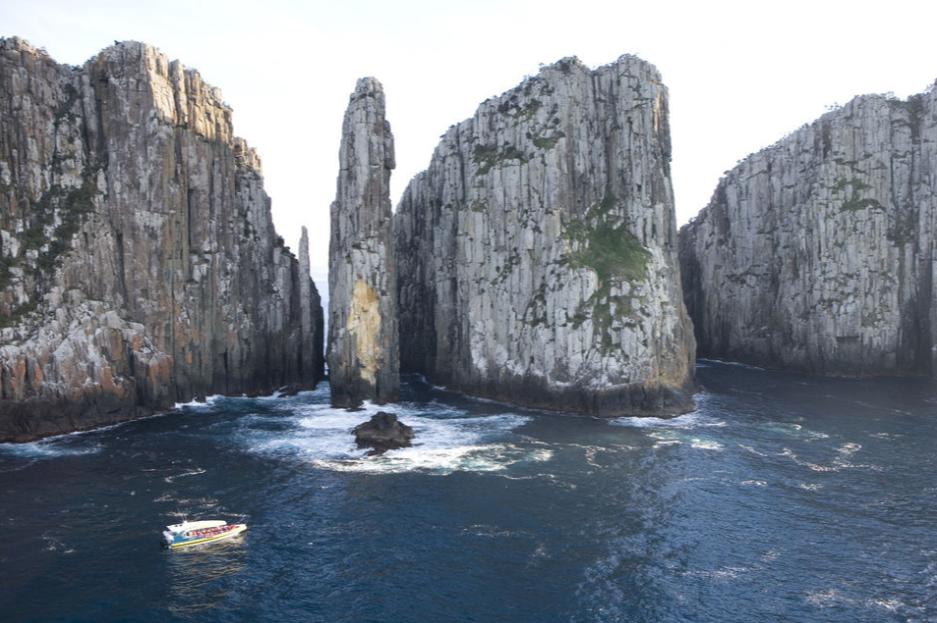 Visit Tasmanian Devil Conservation Park